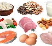 Что такое белки, и для чего они нужны?