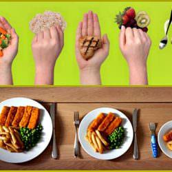 Уроки правильного питания. Урок 12. Правильная порция — какая она?