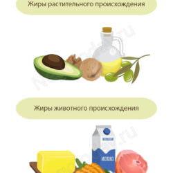 Жиры растительные VS жиры животные. Что полезней?